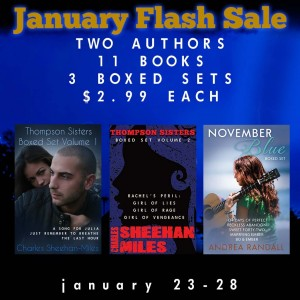 January Flash Sale