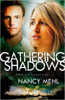 Gathering Shadows Book Review
