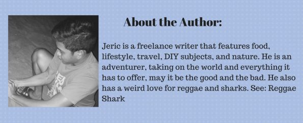 about-the-author-jeric