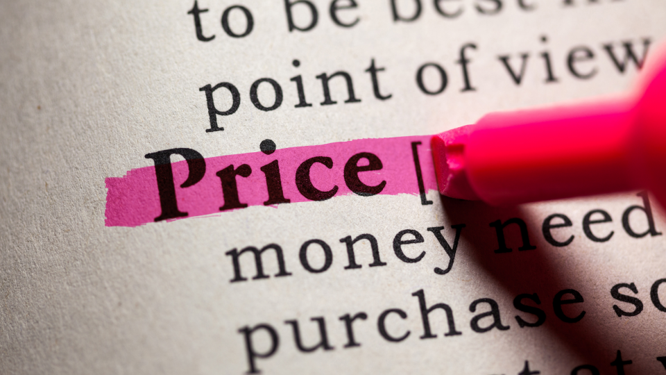 Pricing 101 - Pricing Strategies in a Nutshell from North Carolina Book Blogger Reading with Frugal Mom